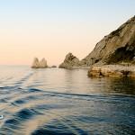 Pesci Fuor d'Acqua Portonovo